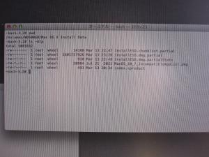 ターミナルでファイルサイズチェック